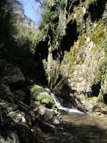 Un particolare della Valle delle Ferriere.