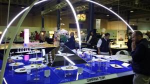 Campania Team - La Terra dei Cuochi al Culinary World Cup 22/26 novembre 2014.